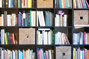Carol Gray's Book Shelf